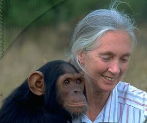31 Heroines of March 2010: Jane Goodall