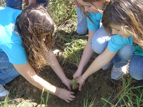 Girls helping our environment by volunteering to plant trees!