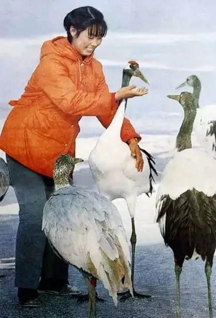 Xu Xiujuan with a red-crowned crane.