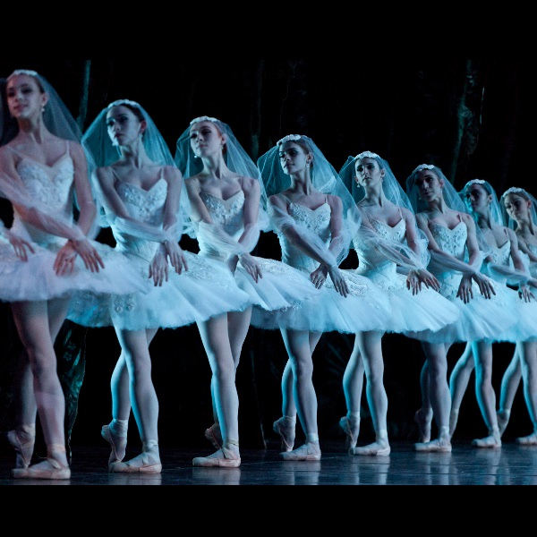 a line of ballet dancers posed the same way